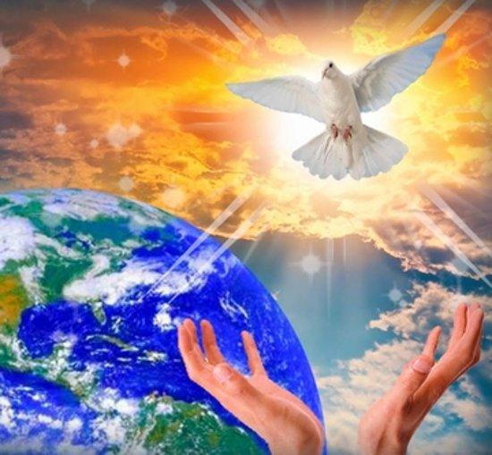 свет и знания для земли